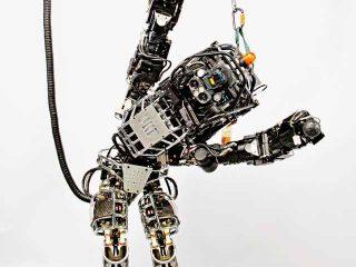 Agile Robots image