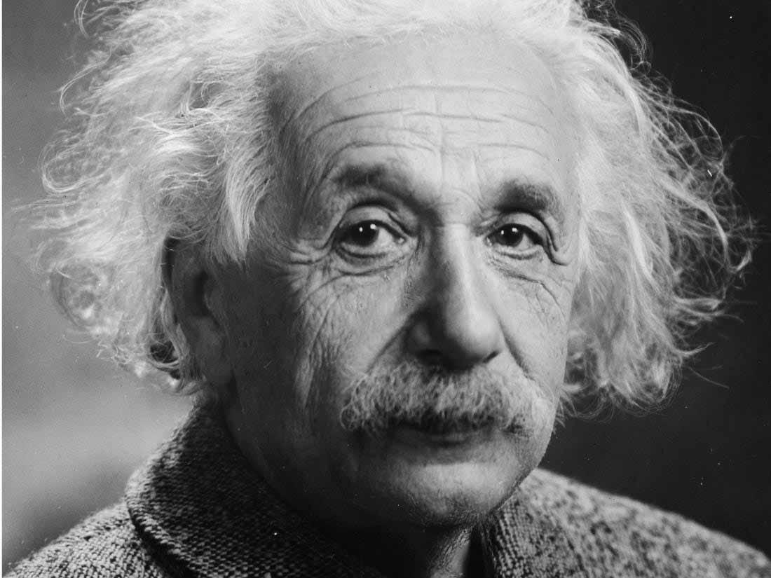 Albert Einstein's eyeballs