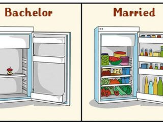 bachelor and married life fun faccts