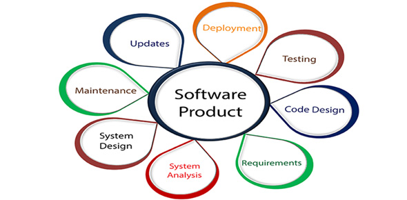 software-web-development